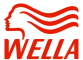 Деятельность компании Велла